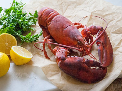Atlantic-lobster-prepared