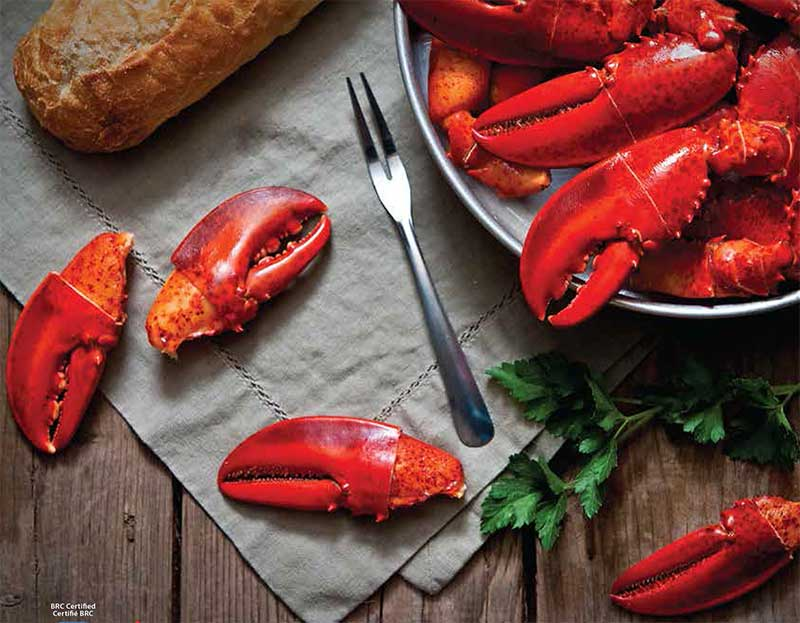 Cooked Lobster Claws